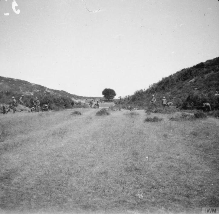 One Tree Gully, foothills south of Kiretch Tepe Sirt, Suvla Bay, where a successful attack was made by the 162nd Infantry Brigade, 15th August, 1915. © IWM (Q 57872)