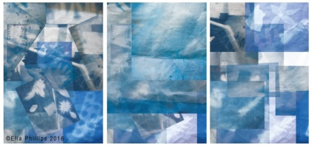 ella-phillips_blue-window-installation-acetate-cyanotype-prints-2016