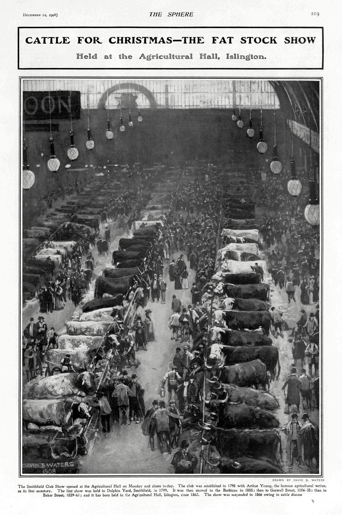 Image 2 Royal Smithfield Show 1908